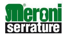 Meroni logo